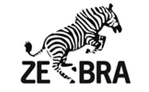 Zebra Gruppen